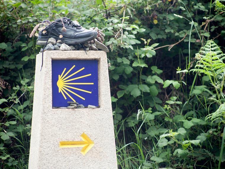 Las Mejores Fotos Del Camino De Santiago Camino De Santiago Mejores Fotos Fotos