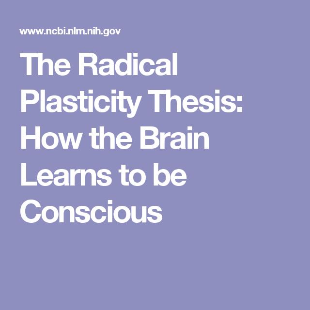 consciousness the radical plasticity thesis