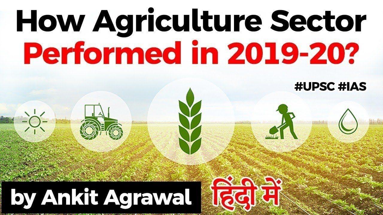 How Agriculture Sector Performed In 201920 Free PDF