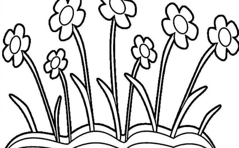 Paling Populer 15 Gambar Bunga Kartun Hitam Putih Galeri Gambar Bunga Matahari Terlengkap Setelah Memberikan Ga Gambar Bunga Menggambar Bunga Matahari Bunga
