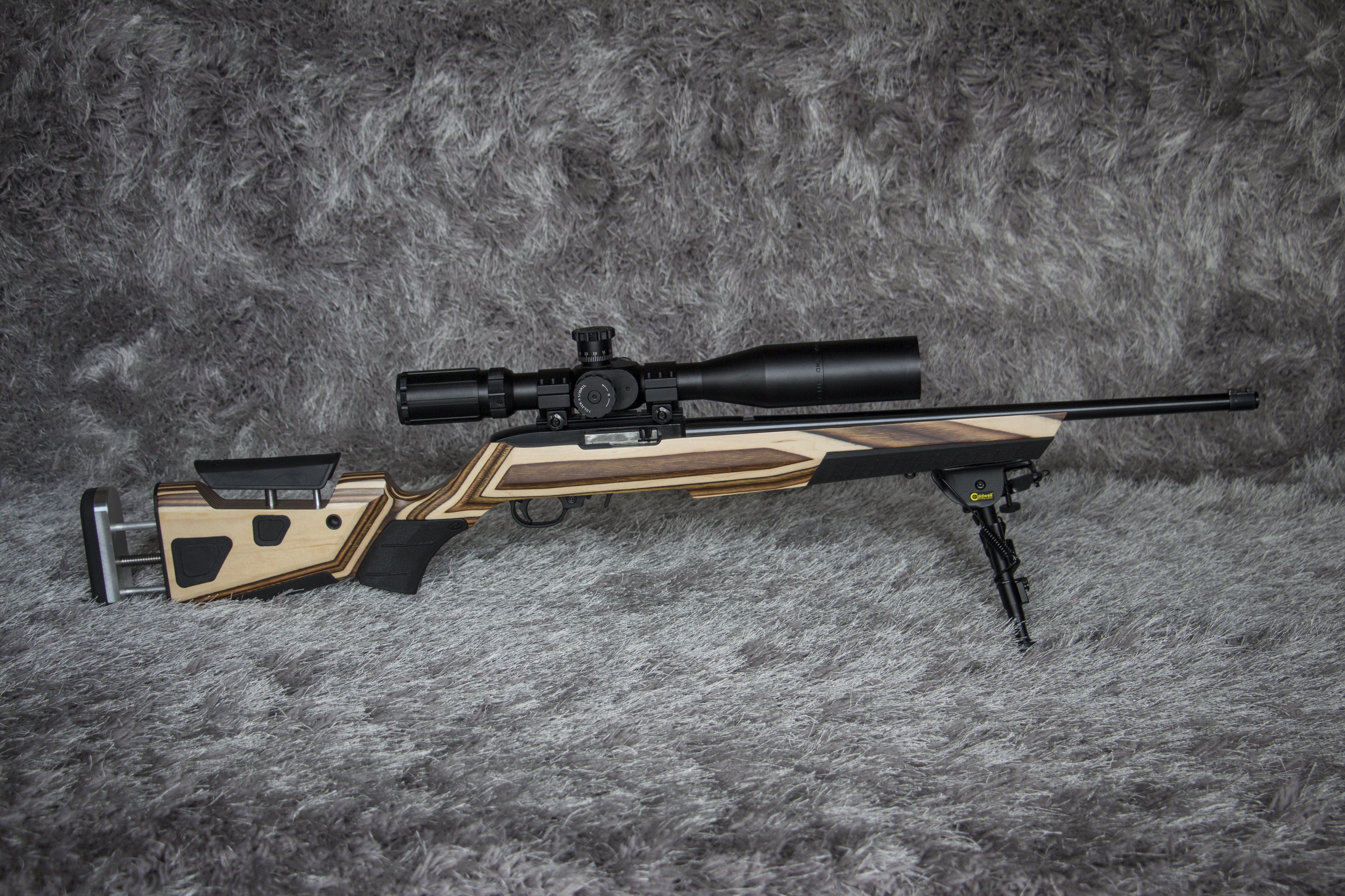 Upgraded  22 Rifles | Rimfire | Rifle stock, Ruger 10 22, Guns