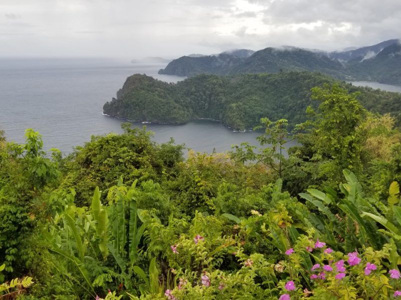 70 Awesome Things to do in Trinidad! - Past the Potholes