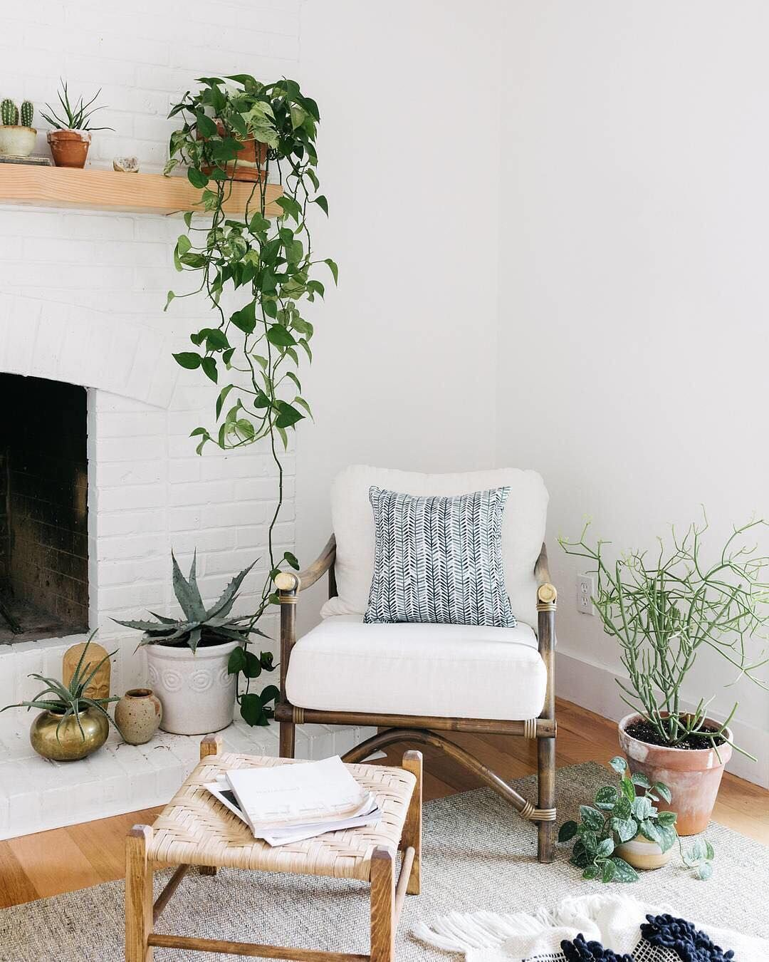 "Your Organic Bedroom: Plant Goals. Home Studio On Instagram: ""Eat Your Greens"