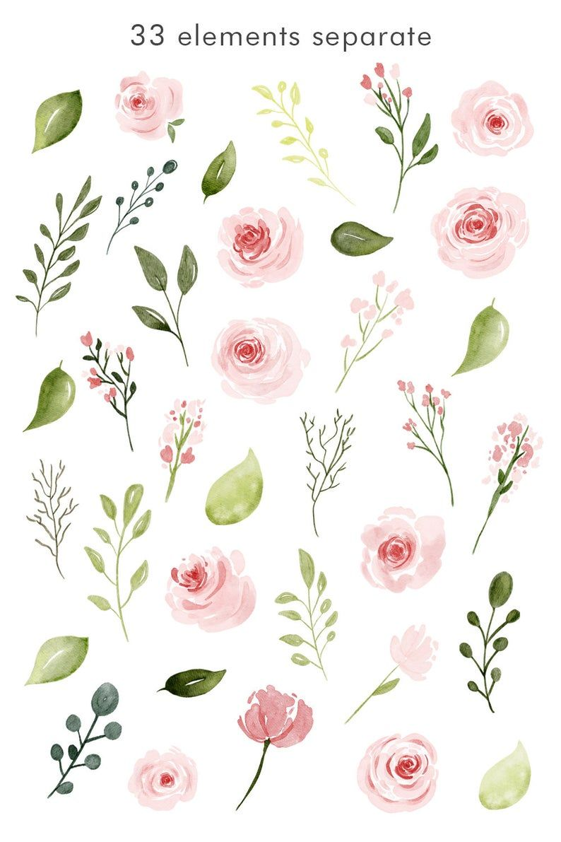 Watercolor Flower Clipart Pink Roses Watercolor Png Flower Clipart Watercolor Flowers Flower Illustration
