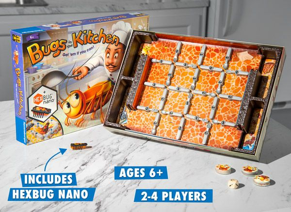 Fast Paced Family Board With A Bug