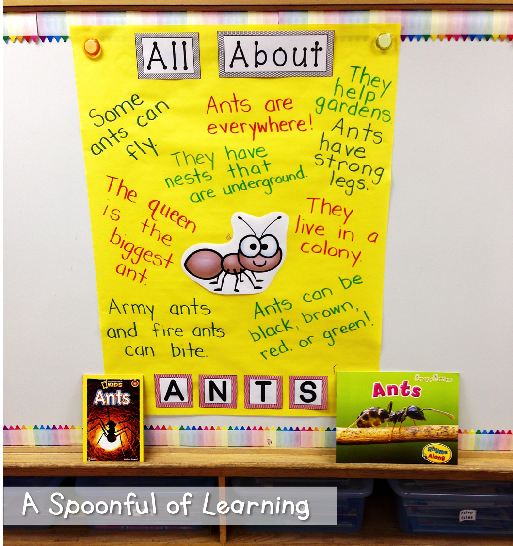 A Kindergarten Teaching Blog