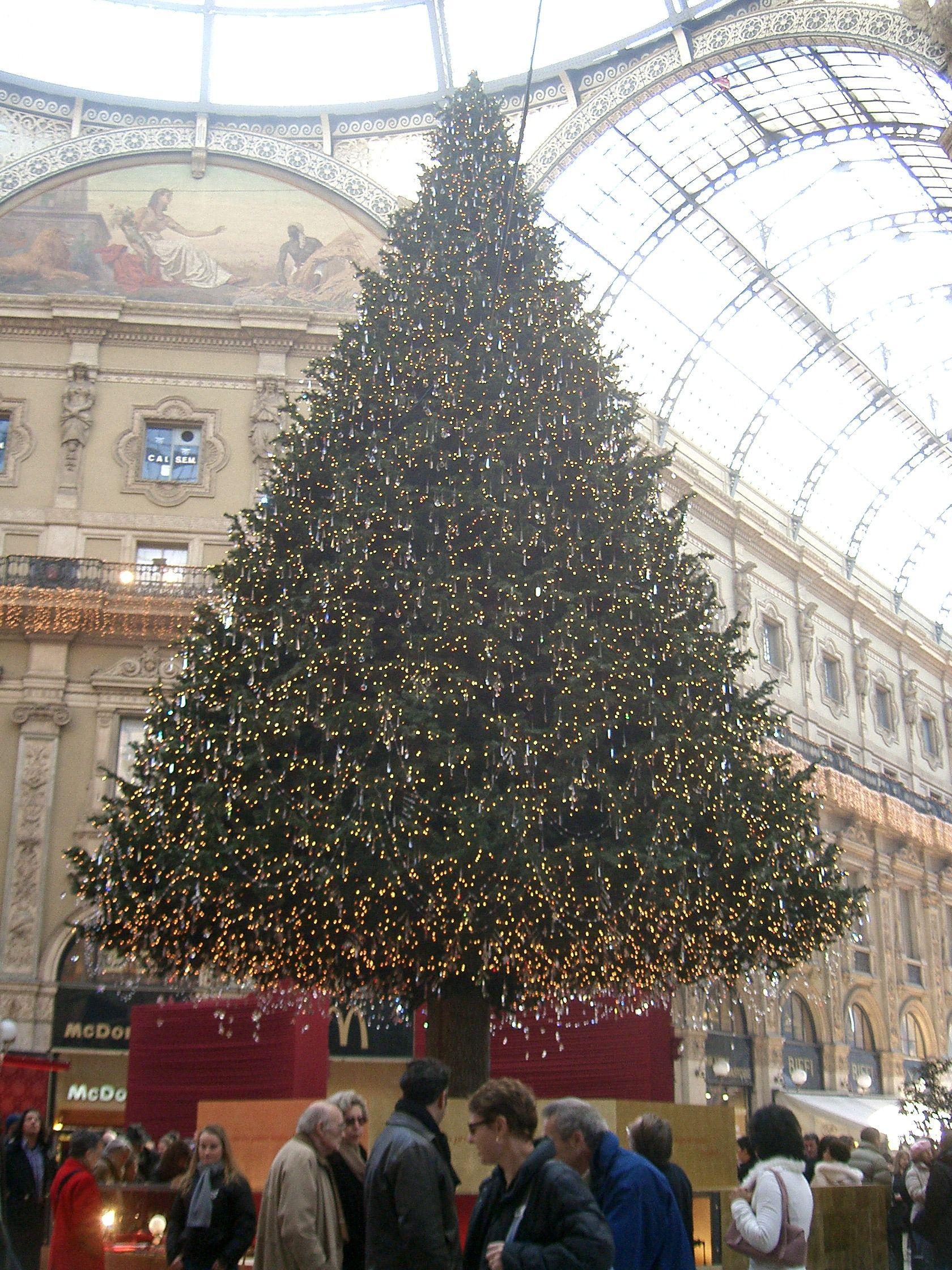 Barthelmessbaum Mailand