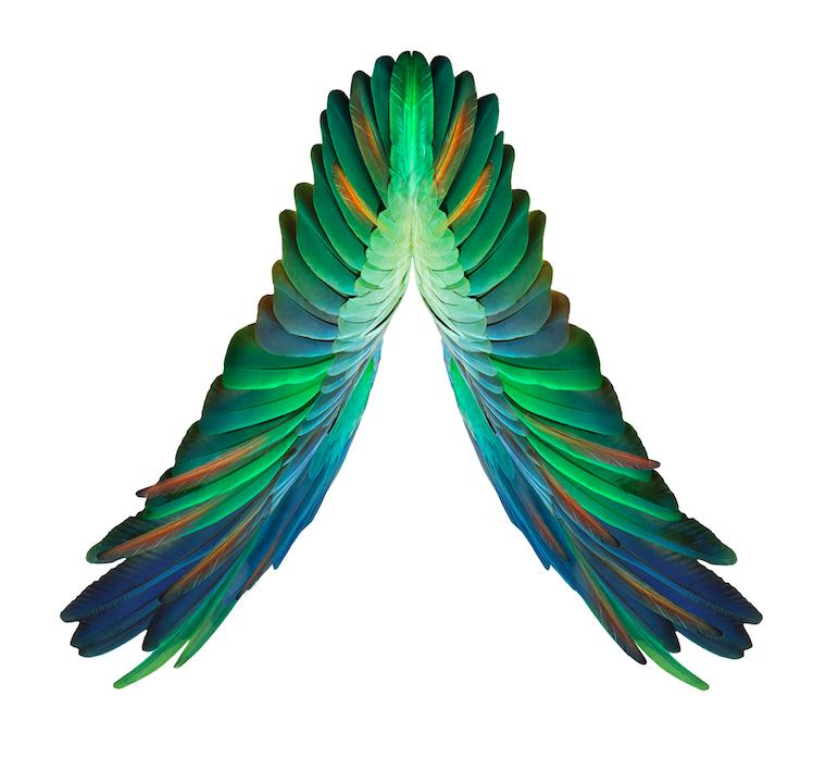 Axwell And Ingrosso Back In The Studio - essentialibiza.com