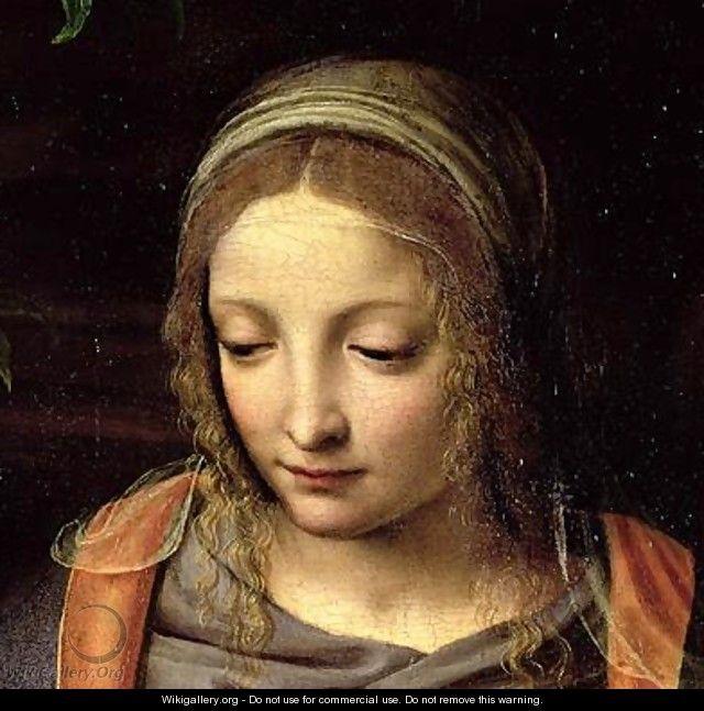 The Virgin and Child in a Landscape 2 - Bernardino Luini