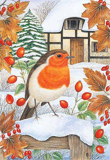 Soloillustratori: Anne Mortimer