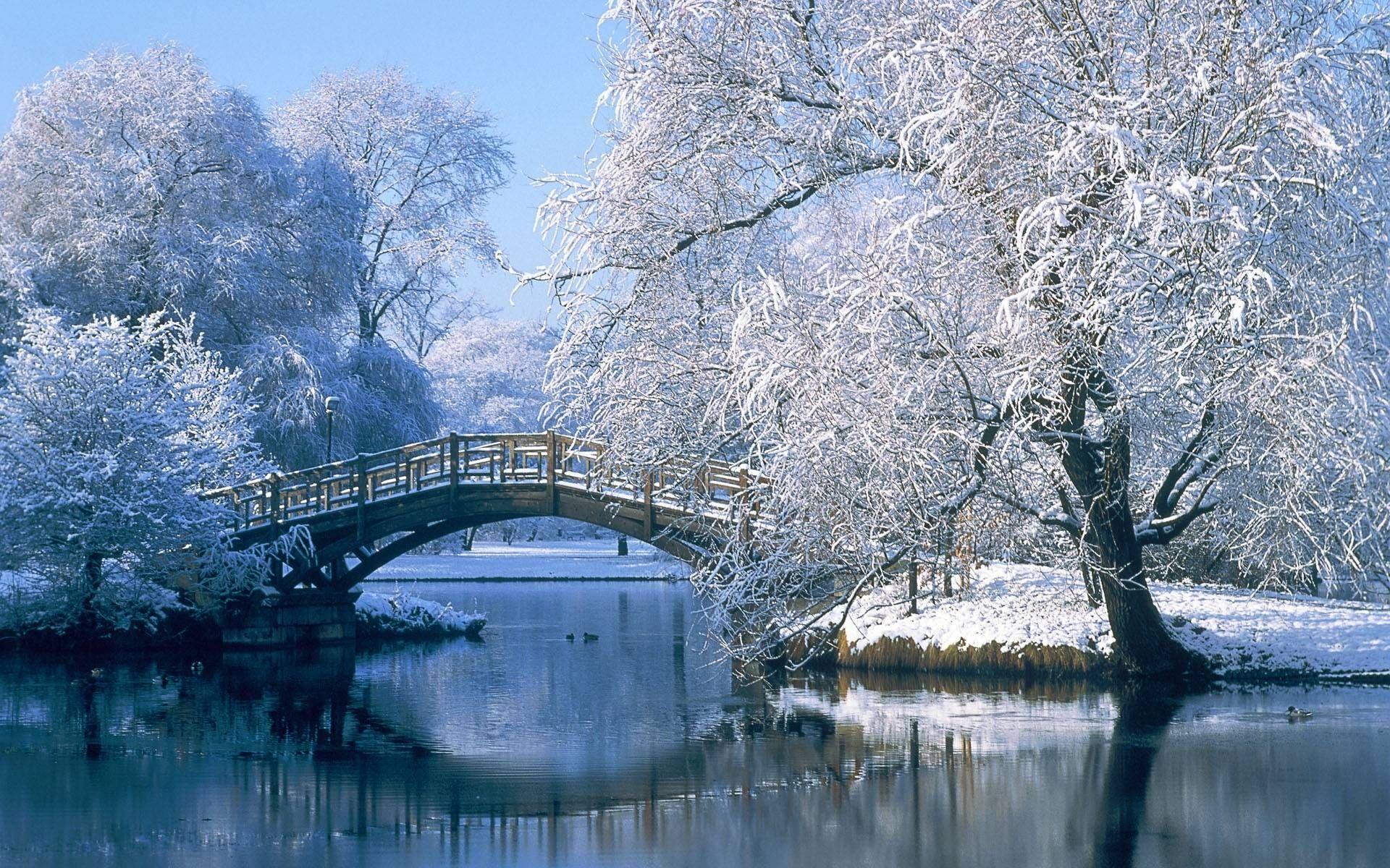 Free Winter Scene Wallpaper Wallpaper Musim Dingin Pemandangan Musim Dingin Wallpaper Alam
