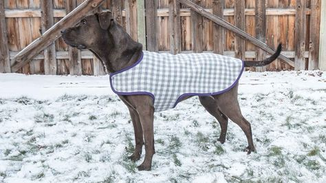 DIY Dog Coat Video Tutorial including drafting the pattern | Dog ...