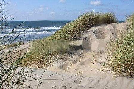 love the dunes..could set here for hours