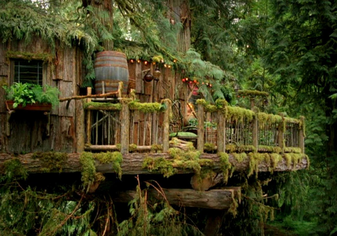 Why not...when boys become men they then have the ability and means of actually building a tree house they can live in