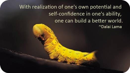Symbolic Caterpillar Meaning | Quotables    Gotta Love 'Em