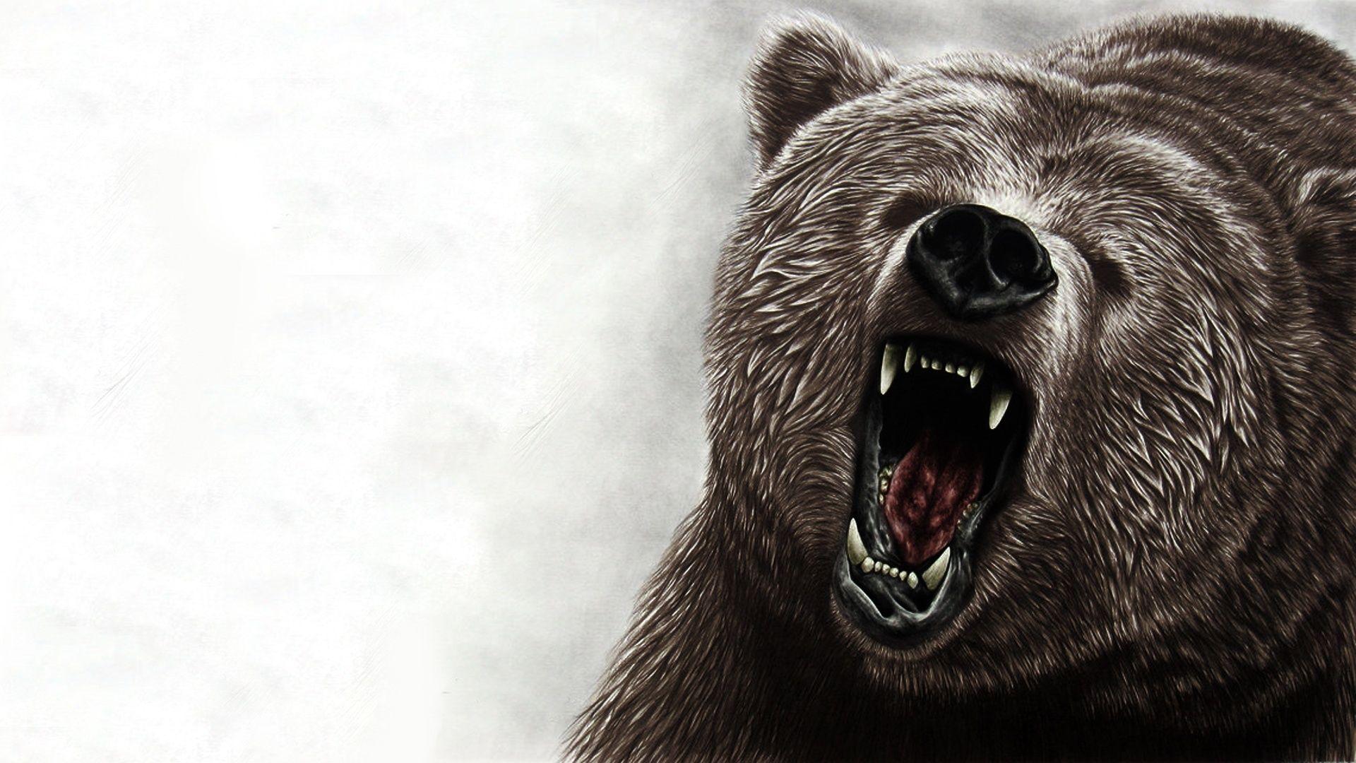 Bear Art Pictures Bear wallpaper, Bear art, Animal wallpaper