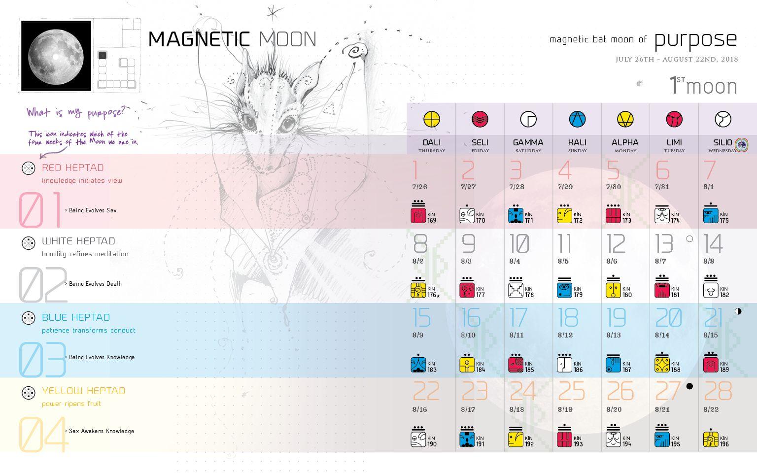 Star Traveler's 13 Moon Almanac of Synchronicity in 2020