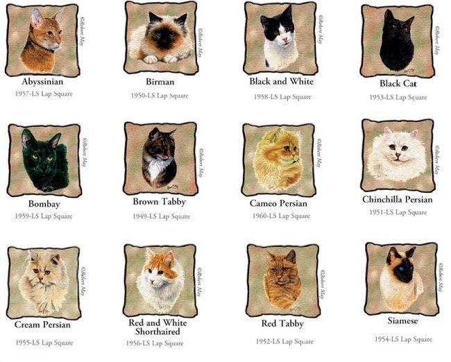 Cat Breeds List A Z Zoe Fans Blog Different Breeds Of Cats Cat Breeds Cat Breeds List