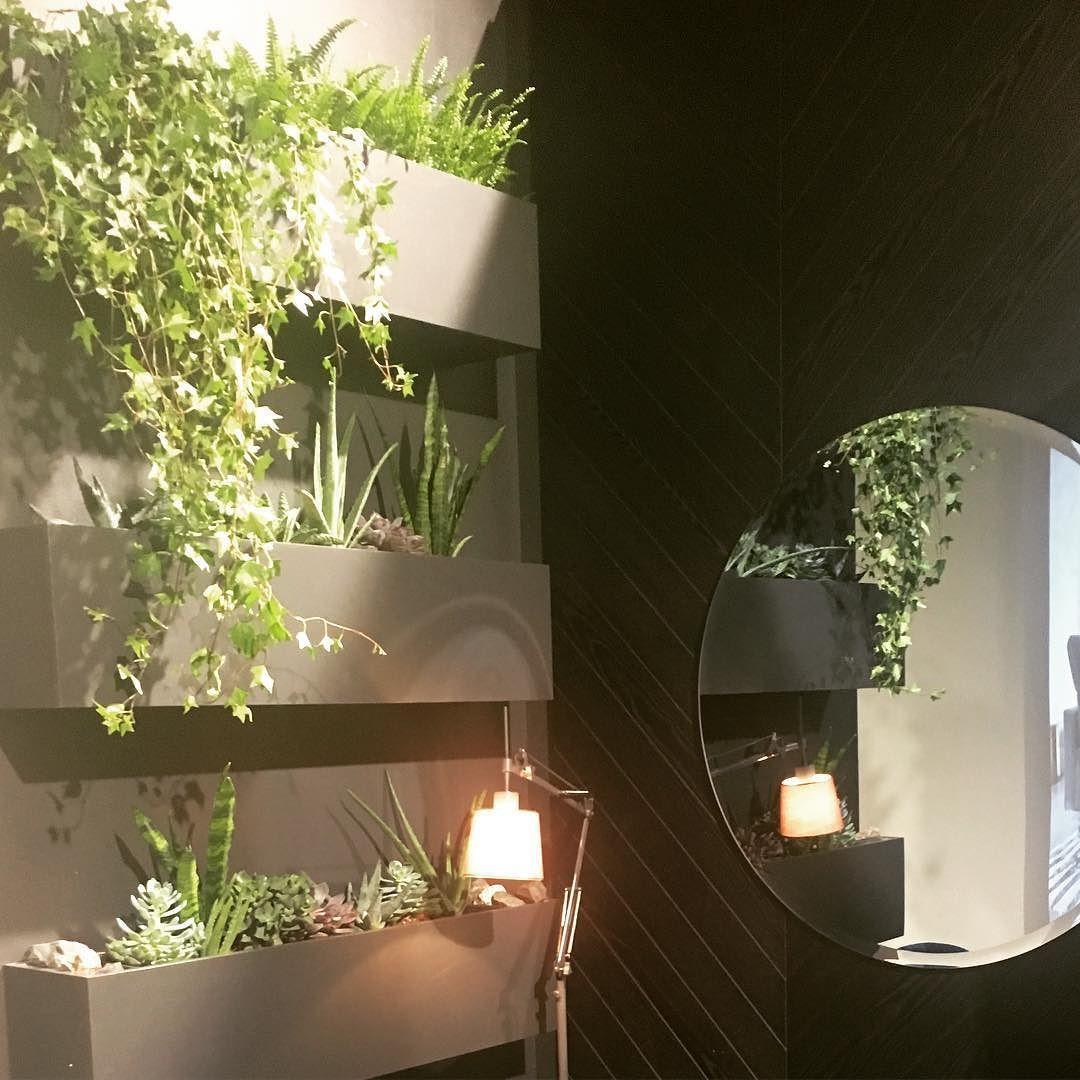 Hyvää yötä viherseinän myötä  #habitare2016 #inredning #messukeskus #sisustusmessut #interiors #interiordesign #greendecor #kasvit #plants #viherseinä #sisustus