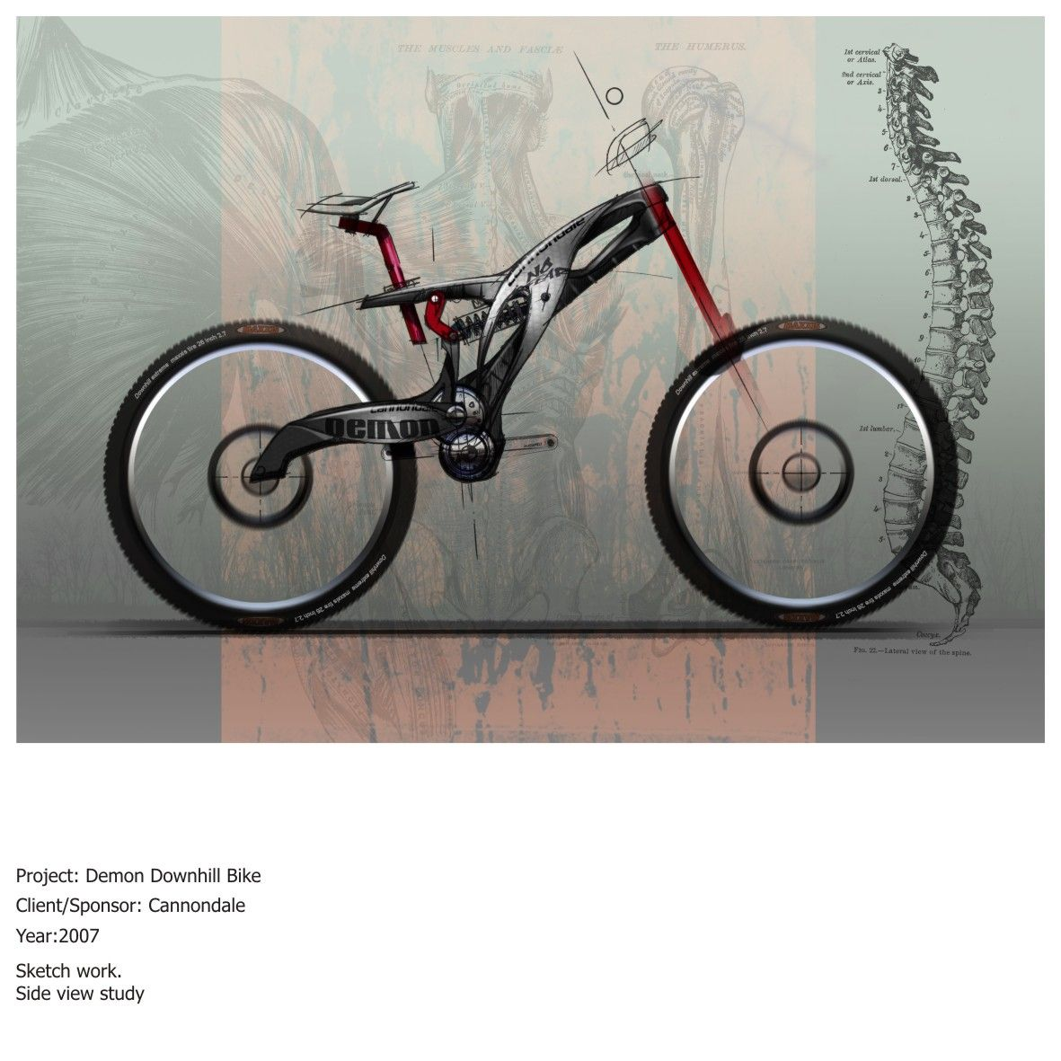 Demon Downhill Bike Sketches 1 Bicycle Bike Sketch Bicycle Sketch