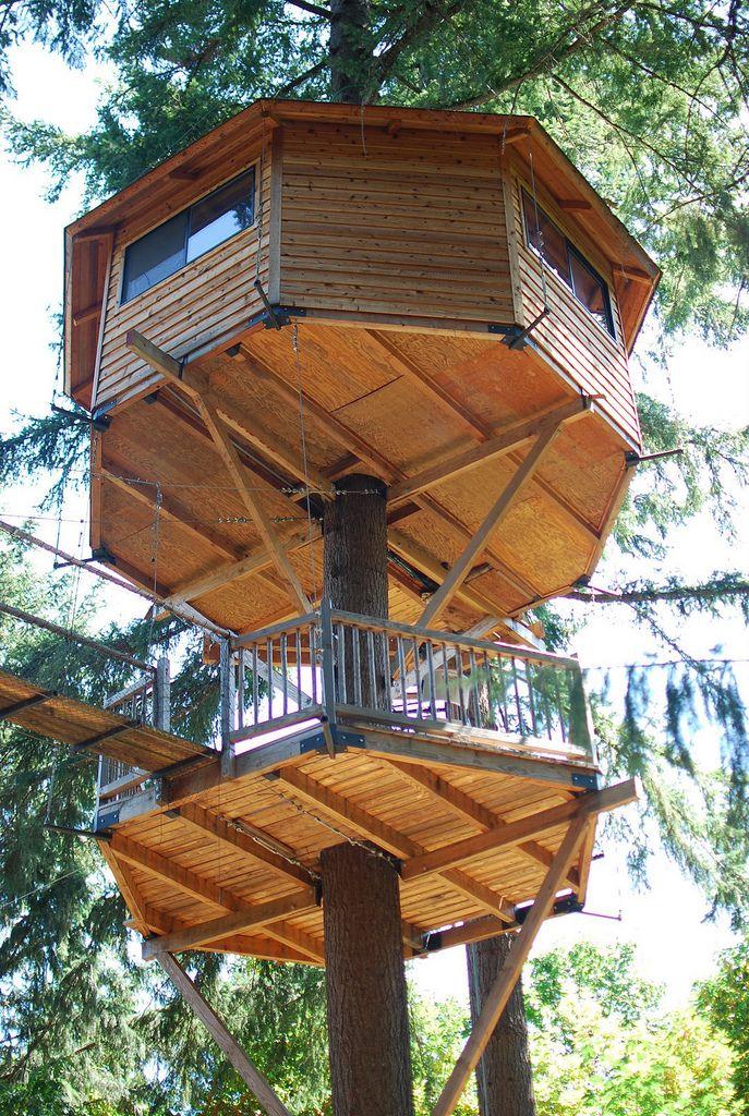 Treehouse And Hexagonal Terrasse Platform Below Tree House Designs Tree House Cool Tree Houses
