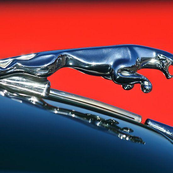 Leaping Jaguar Hood Ornamnet 2 Hood Ornaments Jaguar Hood Ornament Jaguar