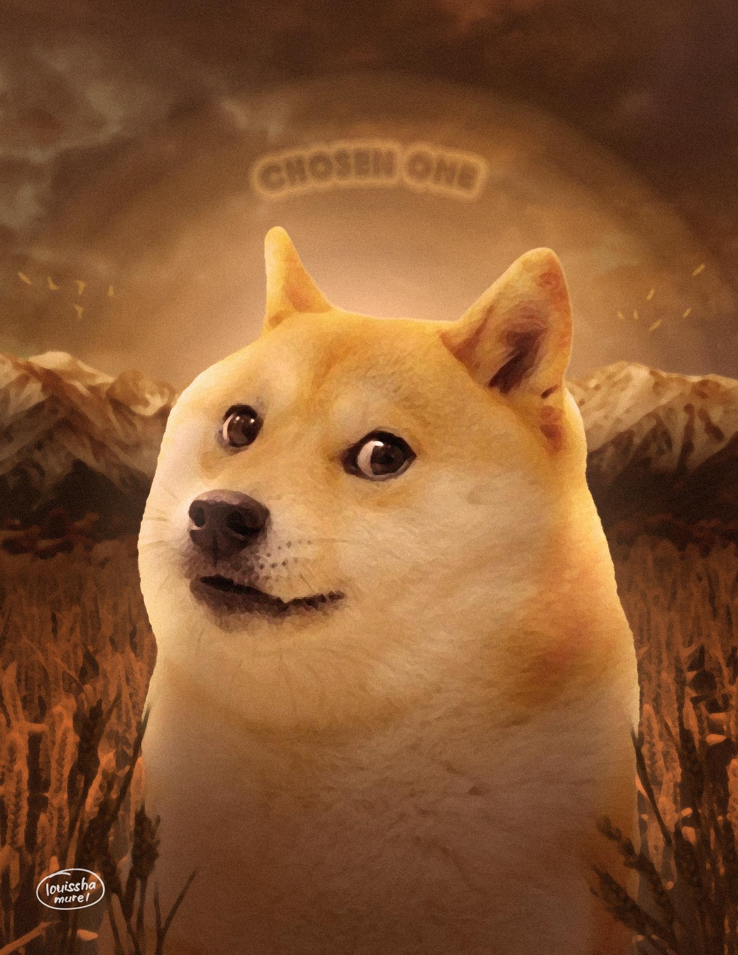 Doge Face Png : Doge,, Chosen, Louisshamurel, Deviantart, Shiba