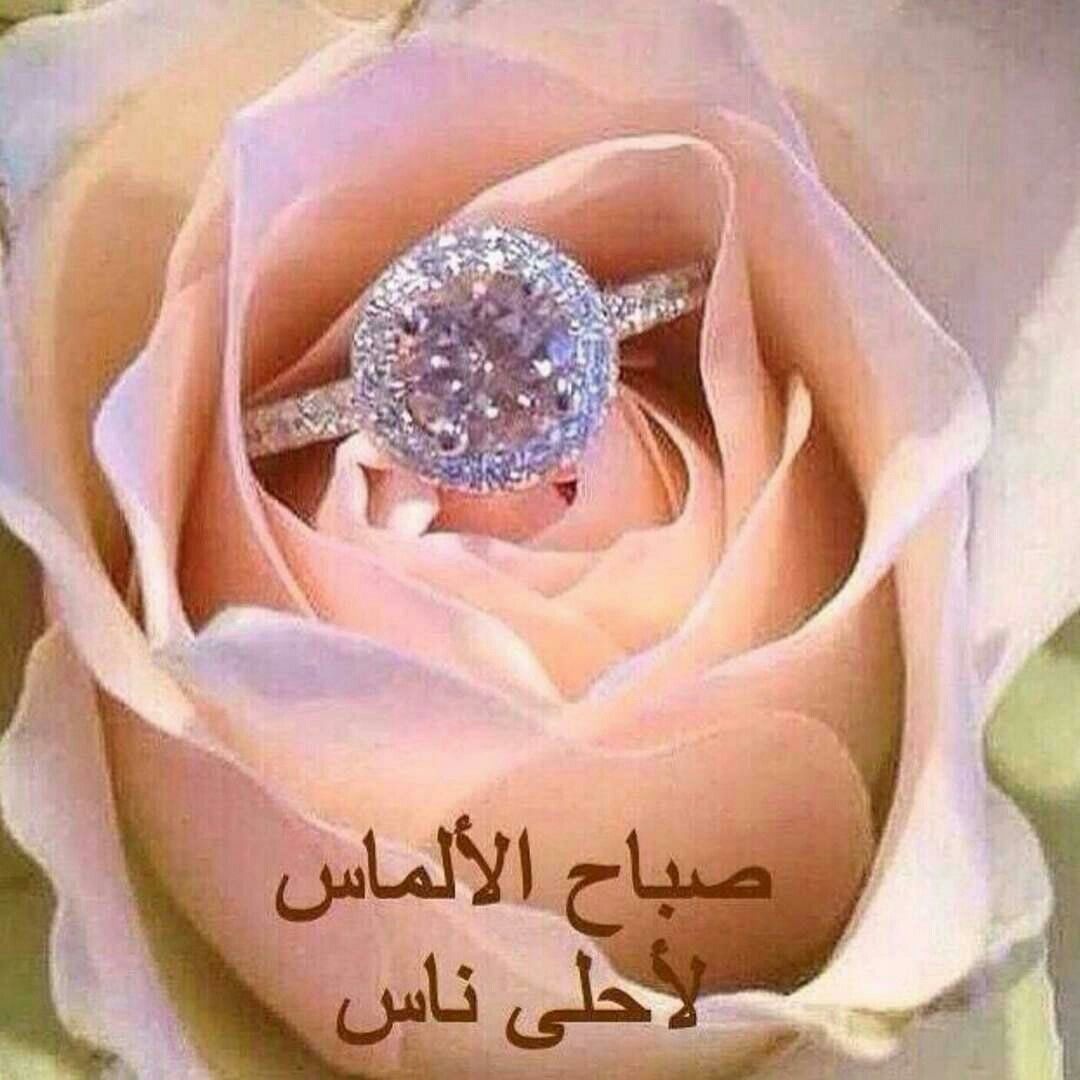 Pin by Chamsdine Chams on صباح.. مساء الخير | Pinterest | Islam