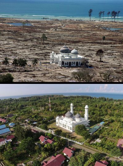 Boxing Day Tsunami Then And Now In Pictures Tsunami Pictures Then And Now Pictures