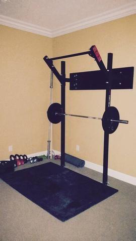 slim gym rigpure strength  diy home gym home gym