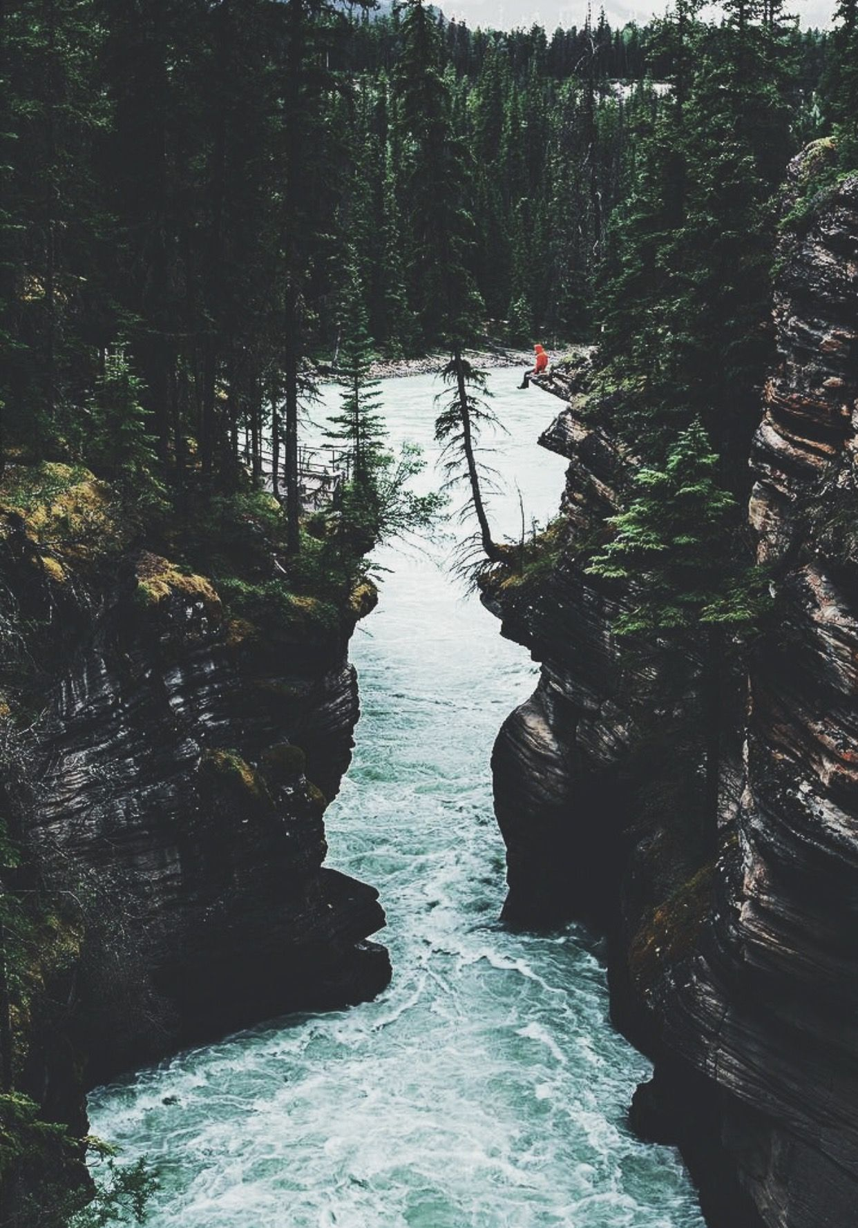 Natural Perfection Theme Into The Wild River Natural Wanderlust Explore Adventure Nature Photography Campi Nature Photography Scenery Nature