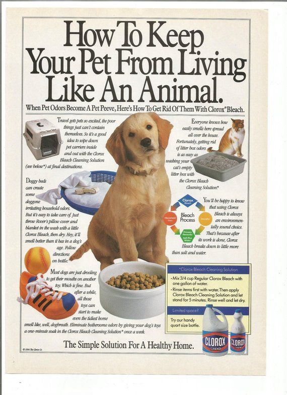 1994 Advertisement Clorox Bleach How To Keep Your Pet From Living