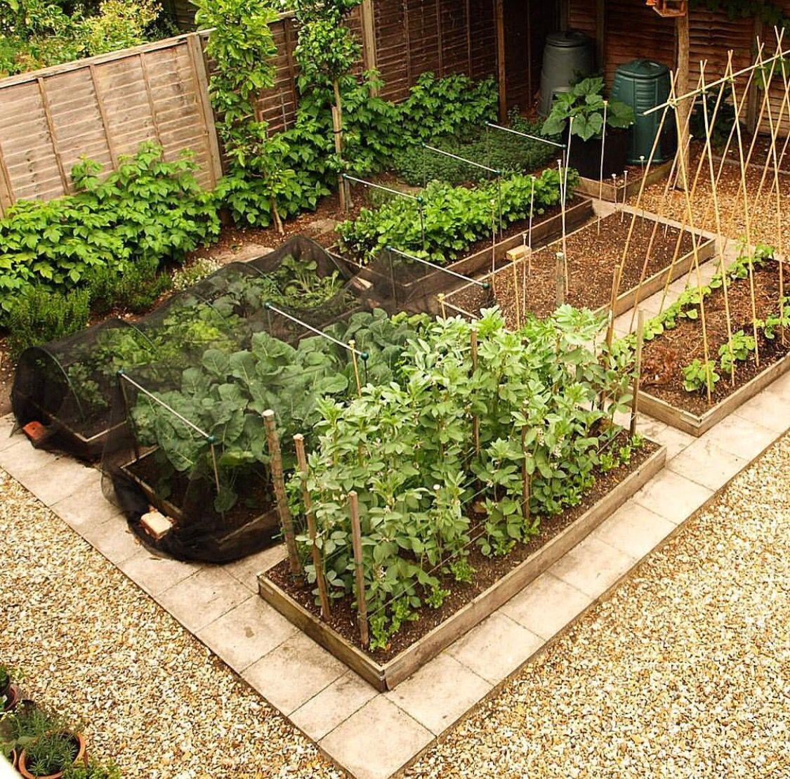 35 Advantageous Small Vegetable Garden Ideas For Your: Garden Layout Vegetable, Vegetable Garden