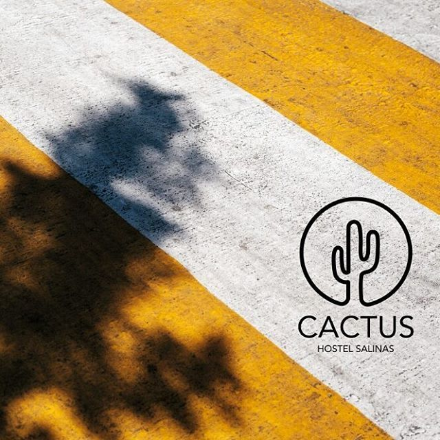 Nuestra misión es hacer de algo cotidiano, algo diferente. Lleno de color y detalles para vivas una experiencia única. ¿Todavía no conoces Cactus Hostel Salinas? ¡Visítanos! http://www.cactushostelsalinas.com/  #Cactus #cactushostelsalinas #salinas #asturias #hostelasturias #becactus #montereylocals #salinaslocals- posted by Cactus Hostel Salinas🌵 https://www.instagram.com/cactushostelsalinas - See more of Salinas, CA at http://salinaslocals.com