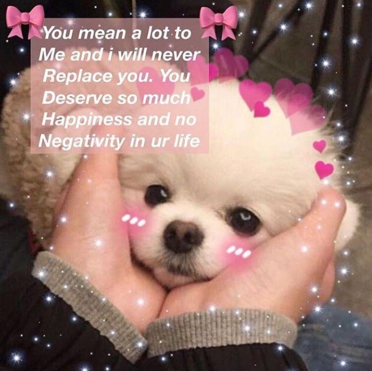 Wholesome Memes Kyndalrush Cute Love Memes Wholesome Memes Cute Memes