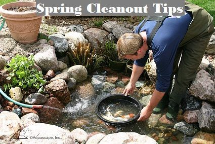 How to Clean Your Water Feature for Spring -   13 backyard garden pond