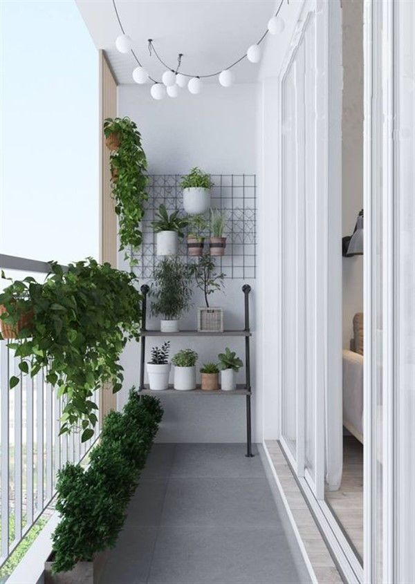 Solution Ideas for Small Balcony: Wall Planter - Unique Balcony & Garden Decoration and Easy DIY Ideas #smallbalconydecor