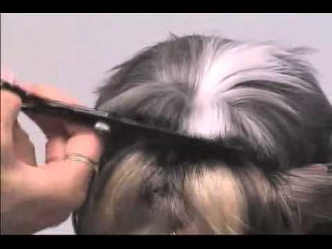 Super Styling Session Shih Tzu Grooming Tips Rumble Pinterest