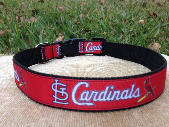 St.+Louis+Cardinals+Dog+Collar+by+LucyLous22+on+Etsy,+$14.00