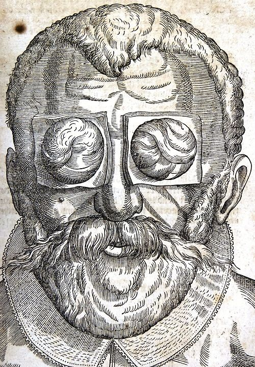 Georg Bartisch, Ophthalmodouleia, 1583.