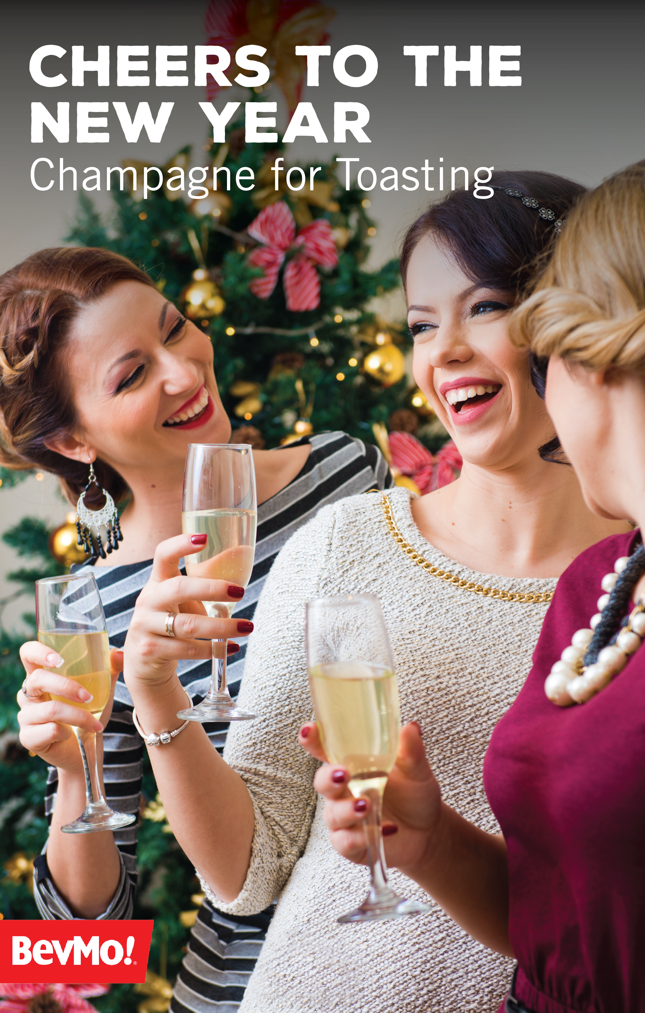 Raise a glass to delicious sparkling wine with help from this 101 guide from BevMo! Finding the perfect bubbly for toasting at your New Year's Eve party from the wide variety of cava, prosecco, sparkling wine, and champagne.