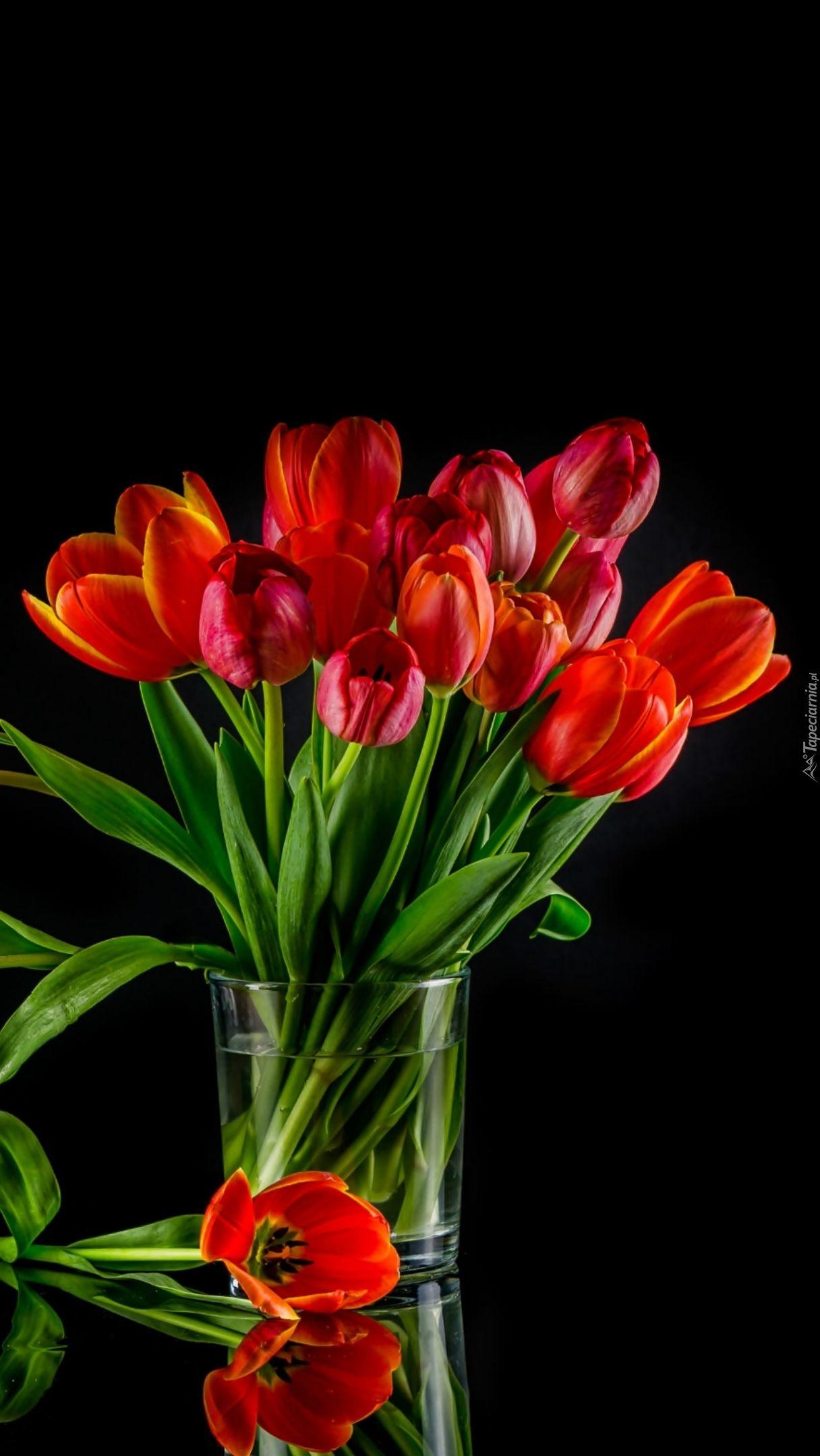 Bukiet Czerwonych Tulipanow Tapeta Na Telefon Plants Wallpaper