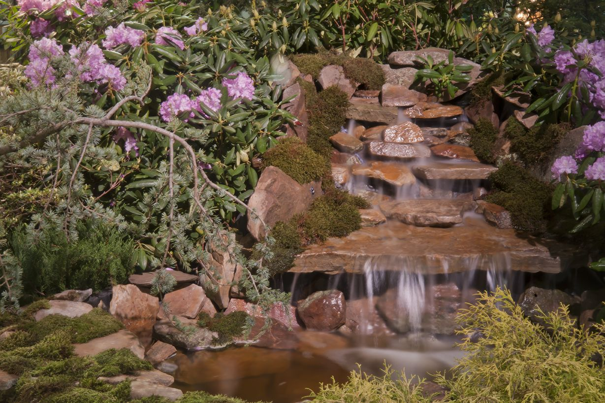 Boston Flower & Garden Show | Exciting Exteriors | Pinterest | Water ...