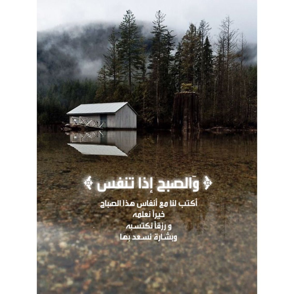 والصبح اذا تنفس Lion Painting Arabic Quotes Islam