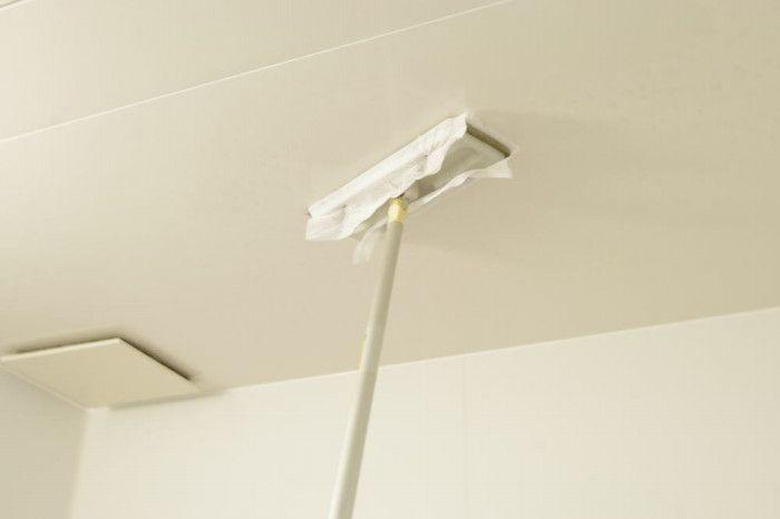 カビキラーで天井 Toilet Paper Life Hacks Home Decor