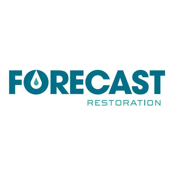Flood Restoration Plano TX