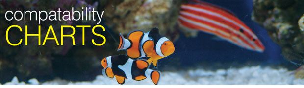 Compatibility Charts for Marine & Freshwater Aquatic Life #compatibilitychart
