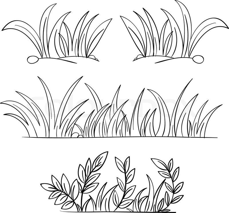 Line Drawing Grass : Grass drawing black and white vector