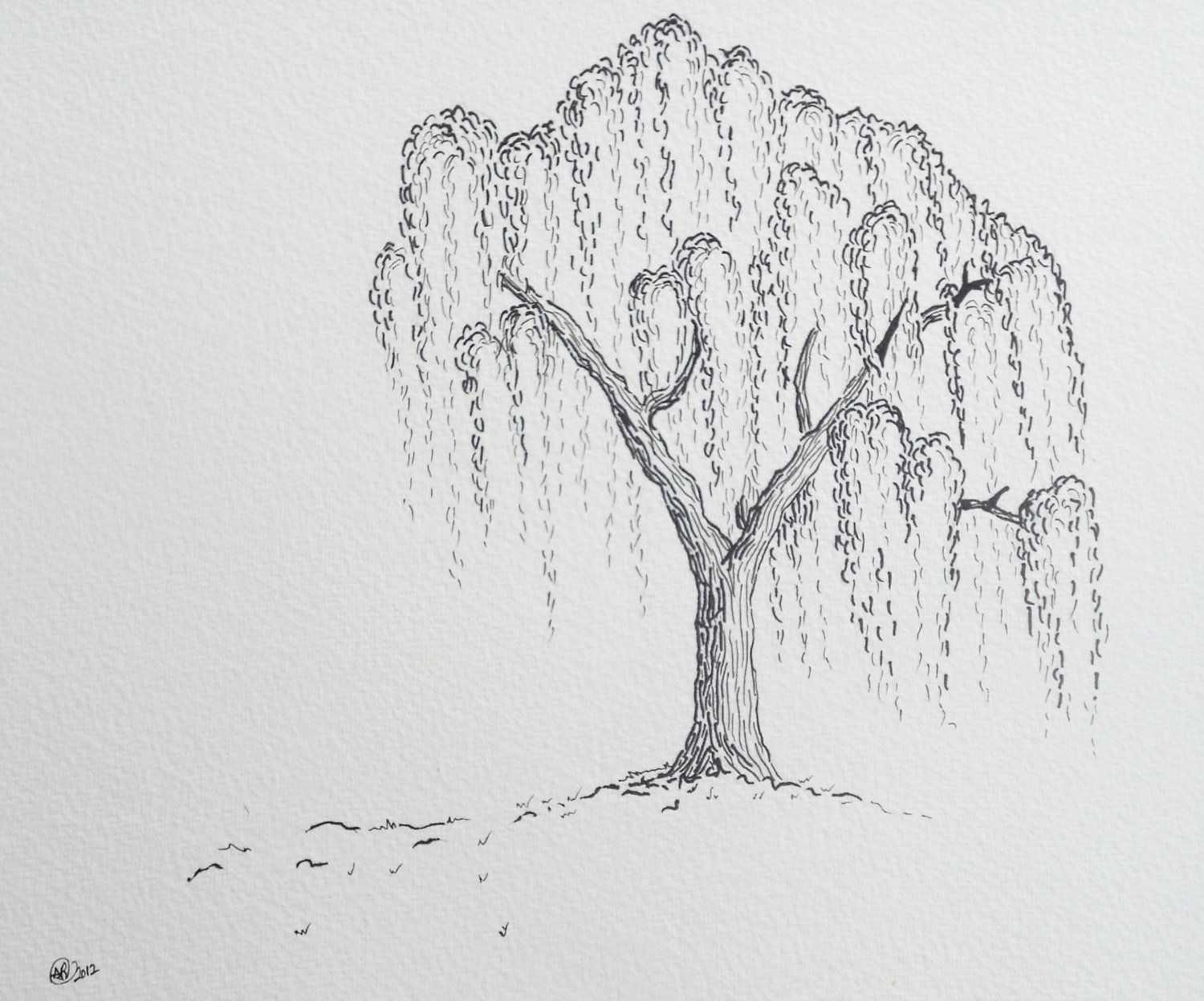 Uncategorized How To Draw A Weeping Willow willow tree original ink drawing ships ready to frame 49 00 via etsy