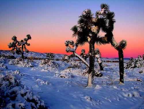 Sunrise Photography Make Your Images Sparkle Shine